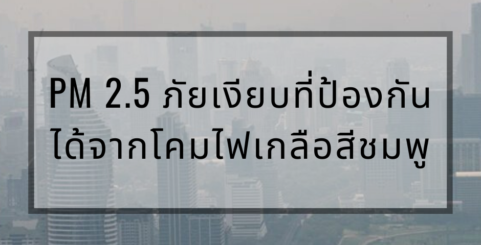PM 2.5 ภัยเงียบที่ป้องกันได้จากโคมไฟเกลือสีชมพู